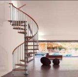 Escalera espiral de cristal usada usada de interior del acero inoxidable del metal de la escalera redonda del diseño del precio del bajo costo