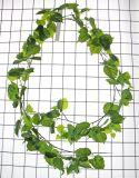 Plantas e flores artificiais da videira de suspensão Gu-Yy0883-3m-IVY