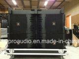 Neue Art Jblvxt V25 verdoppeln 15inch grosse Dreiwegezeile Reihen-Lautsprecher