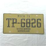 plaque d'immatriculation de numéro de véhicule de 15*30cm de plaque métallique