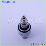 Sinol Multiflex LED 연결기 빠른 연결 연결기 Hesperus 치과 Handpiece 2 구멍 연결