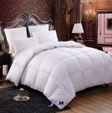 Insieme del Comforter del Duvet dell'hotel del fornitore della Cina