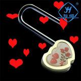 De bon augure Endroit pittoresque coeur avec les touches de verrouillage