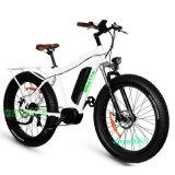 48 В 1000W жир шины снег электрический велосипед с подвеской вилочного захвата