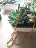 ダイヤモンドの止め金のHip Hopの金ロープの鎖のネックレスMjcn055