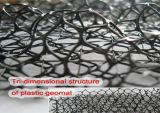 Abnutzung-Steuermatte 3D Geomat für Aufbau