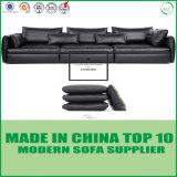 Modernes Italien-ledernes Feder-Sofa-gesetzte Möbel