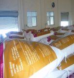 熱い販売の優秀な品質の食品等級の重炭酸ナトリウム