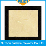 Fushijia容量1000kgの大理石の床が付いている贅沢な乗客の上昇