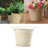 卸し売り旧式な錫の屋内屋外の園芸植物の鍋