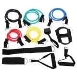 faixas elásticas da resistência da aptidão das câmaras de ar do treinamento do exercício 12PCS/Set ajustadas para a ioga Pilates