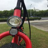 アルミ合金フレームの750W雪山の脂肪質の電気バイク