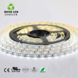 Prix de gros 2835 120LED SMD Bande LED avec DC12V 24V Pure Nature Couleur blanc chaud