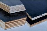 La película caliente del negro de la venta hizo frente a la madera contrachapada para Shuttering