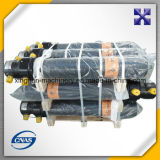 Cilindro olio idraulico del ribaltatore/del camion personalizzato