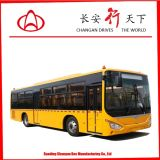 Low Price를 가진 10.5m School Bus 55 Seats Diesel Bus Luxury School Bus