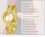 Задней части нержавеющей стали вахты платья повелительниц кварца японии Movt оптовой продажи 2017 Wristwatch новой водоустойчивый для фирменного наименования Belbi Supporttt женщин, Paypal, западного соединения