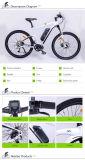 Bici eléctrica de la impulsión media de alta velocidad (TDF93L)