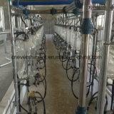 Sala de ordenha espinha de peixe 20 lugares de vaca em sistema de ordenha Automática