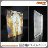 높은 광도 알루미늄 직물 직물 LED 가벼운 상자