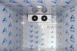 CER anerkannter Kühlraum für Eiscreme-Speicher