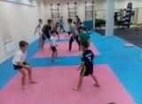 1m*1m высокая плотность Taekwondo коврик