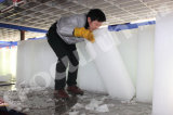 Sur la vente de blocs de glace Making Machine commerciale en Chine