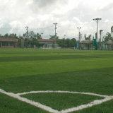 Искусственным газоном для травяных культур Playgroung спорта