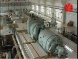 배압 증기 터빈 발전기