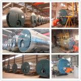 Caldaie a vapore a petrolio del gas industriale nella fabbrica dell'alimento