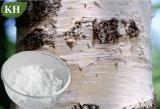 Estratto 70%, 80%, 90%, 98% Betulin della corteccia di betulla
