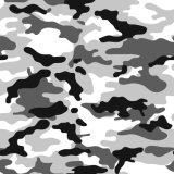 PE Le revêtement en aluminium/aluminium Pre-Painted Feuille de camouflage pour récipient de chambre