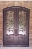 Шикарная конструкция двери двойного входа ковки чугуна с стеклом