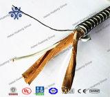 12/2 12/3 10/2 10/3 cabos de Mc com Thhn ou núcleo Xhhw-2 galvanizaram cabo distribuidor de corrente blindado da fita da liga de alumínio