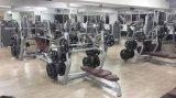 Tz-6050 растягивание трицепса DIP-тренажерный зал фитнес-/Wholsale спортзал растягивание трицепса осуществлять машины/Прочность машины
