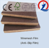 contre-plaqué de film de faisceau de peuplier de la colle WBP de 9mm-21mm 1220*2440mm