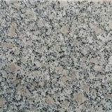 Nero, grigio, bianco, giallo fiammeggiato/granito del Sandblast per i punti quadrati