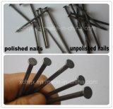 釘を作るための工場価格の釘の生産ラインか釘の機械装置
