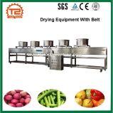 ベルトが付いている果物と野菜の乾燥装置