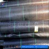 110GSM de zwarte pp Geweven Mat van het Onkruid met Groene Lijnen voor de Markt van Australië