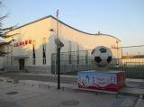 Здание рамки космоса стадиона Hall спортов стальное
