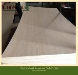 El contrachapado de madera de teca con núcleo de madera para el mercado de la India