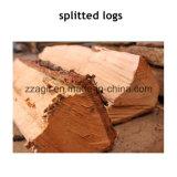 Coupe de bois des forêts de la machinerie Horizantal fendeuse de bûches pour la vente