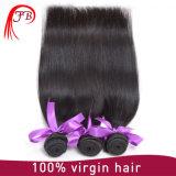 品質の人間の毛髪のBarzilianの良いバージンのまっすぐで膚触りがよい毛の拡張