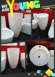 Modello di ceramica del bacino di basamento nuovo no. A203 dal 2015