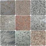 Granit Tile Colors für Customers Selection