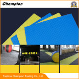 Arts Martiaux en mousse EVA Teakwondo salle de gym tapis de plancher, prix d'usine de taekwondo d'Interverrouillage EVA Tatami mat