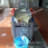 Vegetais de conservação em vinagre que cortam e que limpam a máquina de processamento de lavagem