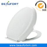 Белый цвет PP туалет крышки багажника (из материковой части Китая)