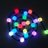 LED 화소 모듈 24V Ws2811 구렁 360 도 공 빛